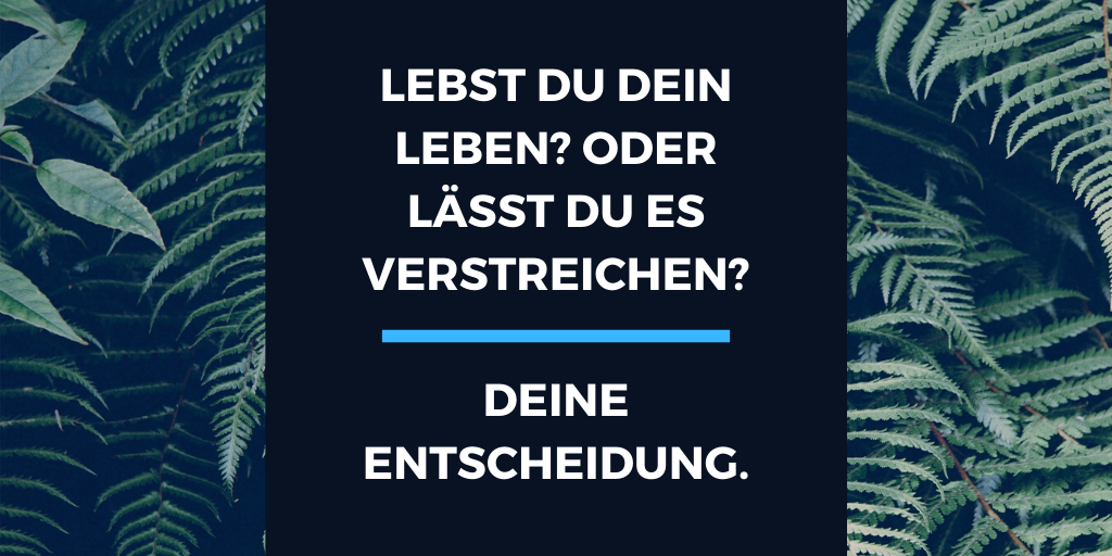 Mind-Hack.de - DU entscheidest, ob du dein leben lebst, oder ob du es verstreichen lässt.